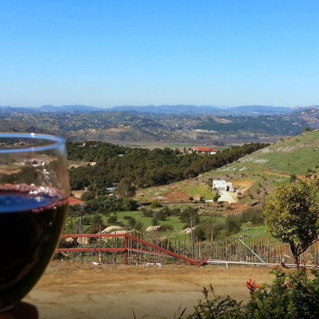 Cordiano_Winery_Tasting_View.png